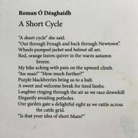 A Short Cycle, Roman O Deaghaidh.jpg