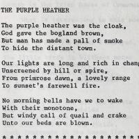 Purple Heather.jpg