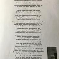 The Battle of Kilcumney  Teresa Malone.jpg